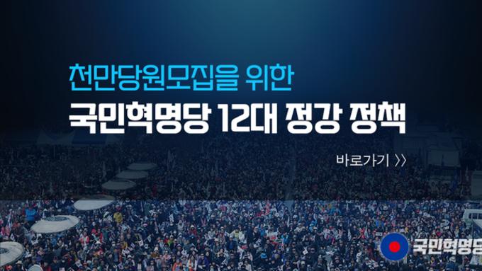 국민혁명당 12대 정강정책